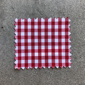 #667 Red Gingham