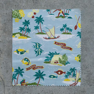 #699 Aloha Hawaiian Short Sleeve - Sky