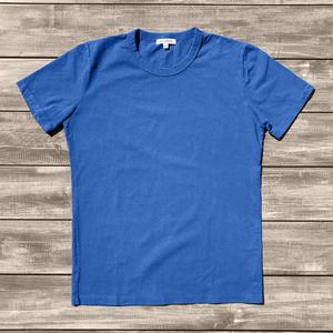 Heavyweight Pigment Dye T-Shirt 2 Pack (Cornflower)