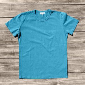 Heavyweight Pigment Dye T-Shirt 2 Pack (Cyan)