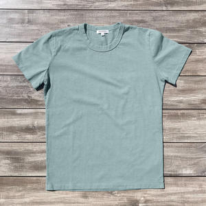 Heavyweight T-Shirt 2 Pack (Green Mist)